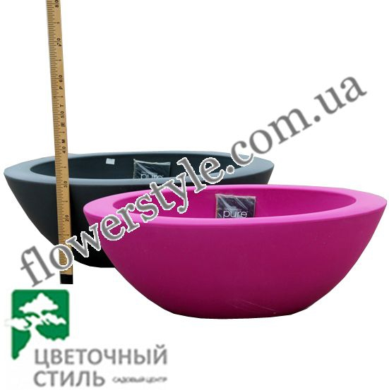 Pure Soft Oval